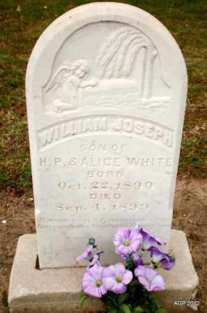 WHITE, WILLIAM JOSEPH - Ashley County, Arkansas | WILLIAM JOSEPH WHITE - Arkansas Gravestone Photos