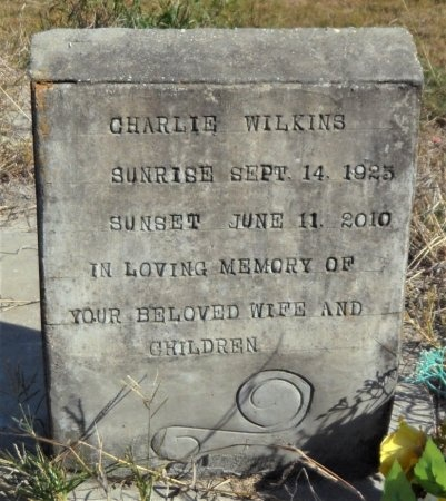 WILKINS, CHARLIE - Ashley County, Arkansas | CHARLIE WILKINS - Arkansas Gravestone Photos