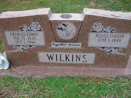 WILKINS, CHARLES EDWIN - Ashley County, Arkansas | CHARLES EDWIN WILKINS - Arkansas Gravestone Photos