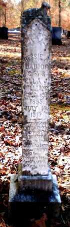 WILLIAMS, BESSIE A - Ashley County, Arkansas | BESSIE A WILLIAMS - Arkansas Gravestone Photos