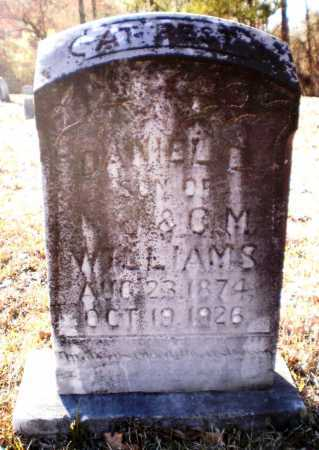 WILLIAMS, DANIEL E - Ashley County, Arkansas | DANIEL E WILLIAMS - Arkansas Gravestone Photos