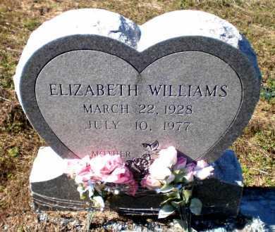 WILLIAMS, ELIZABETH - Ashley County, Arkansas | ELIZABETH WILLIAMS - Arkansas Gravestone Photos