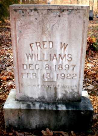 WILLIAMS, FRED W - Ashley County, Arkansas   FRED W WILLIAMS - Arkansas Gravestone Photos