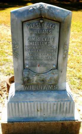 WILLIAMS, HERSEY LEE - Ashley County, Arkansas | HERSEY LEE WILLIAMS - Arkansas Gravestone Photos