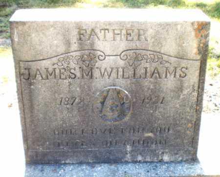 WILLIAMS, JAMES M - Ashley County, Arkansas   JAMES M WILLIAMS - Arkansas Gravestone Photos