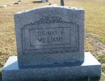 WILLIAMS, THOMAS B. - Ashley County, Arkansas | THOMAS B. WILLIAMS - Arkansas Gravestone Photos
