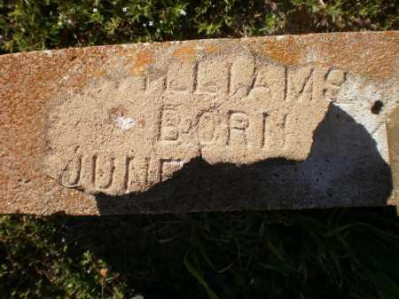 WILLIAMS, UNKNOWN - Ashley County, Arkansas | UNKNOWN WILLIAMS - Arkansas Gravestone Photos