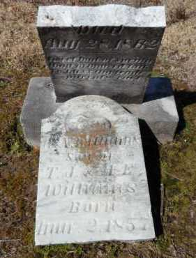 WILLIAMS, W N - Ashley County, Arkansas | W N WILLIAMS - Arkansas Gravestone Photos