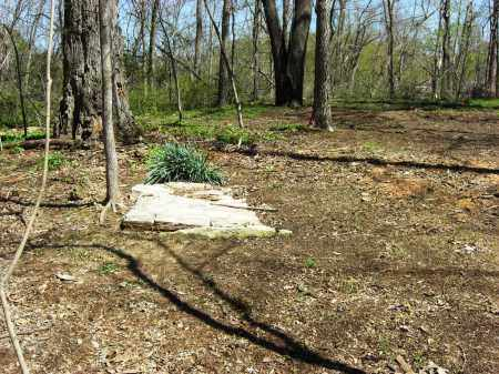 *, SALES CEMETERY OVERVIEW - Baxter County, Arkansas   SALES CEMETERY OVERVIEW * - Arkansas Gravestone Photos