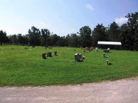*, *BENTLEY RIDGE CEMETERY - Baxter County, Arkansas   *BENTLEY RIDGE CEMETERY * - Arkansas Gravestone Photos