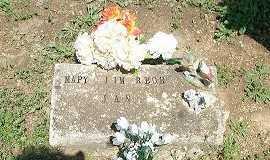 COX CLIMER, MARY A. - Baxter County, Arkansas | MARY A. COX CLIMER - Arkansas Gravestone Photos