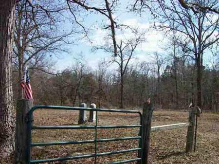 *, GREEN BRIAR CEMETERY - Baxter County, Arkansas | GREEN BRIAR CEMETERY * - Arkansas Gravestone Photos