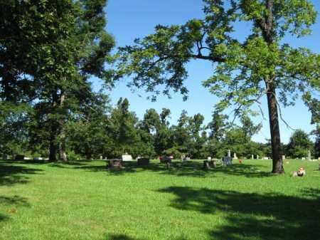 *, DOUGLAS CEMETERY - Baxter County, Arkansas   DOUGLAS CEMETERY * - Arkansas Gravestone Photos