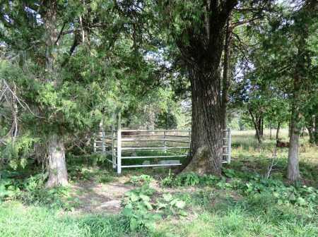 *, ELLISON FAMILY CEMETERY OVERV - Baxter County, Arkansas   ELLISON FAMILY CEMETERY OVERV * - Arkansas Gravestone Photos