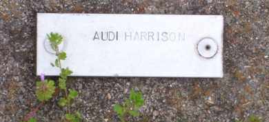 HARRISON, WILLIAM AUDI - Baxter County, Arkansas | WILLIAM AUDI HARRISON - Arkansas Gravestone Photos