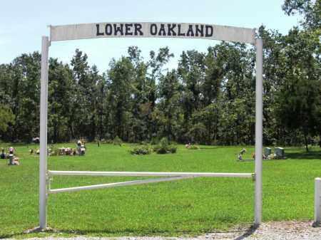 *, LOWER OAKLAND CEMETERY - Baxter County, Arkansas | LOWER OAKLAND CEMETERY * - Arkansas Gravestone Photos