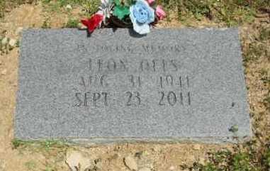 OELS, LEON - Baxter County, Arkansas | LEON OELS - Arkansas Gravestone Photos