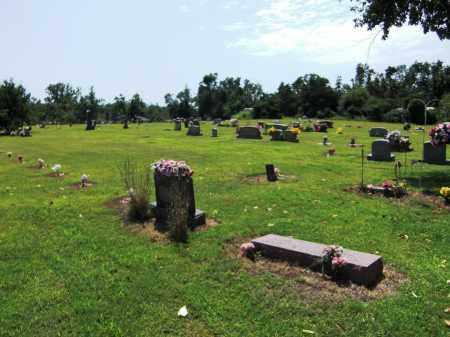 *, QUALITY RIDGE CEMETERY - Baxter County, Arkansas   QUALITY RIDGE CEMETERY * - Arkansas Gravestone Photos