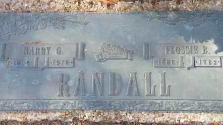 RANDALL, HARRY G. - Baxter County, Arkansas | HARRY G. RANDALL - Arkansas Gravestone Photos