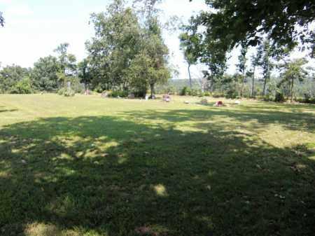 *, RICE CEMETERY (2) - Baxter County, Arkansas | RICE CEMETERY (2) * - Arkansas Gravestone Photos