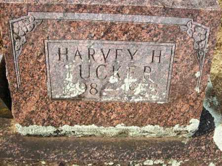 TUCKER, HARVEY H - Baxter County, Arkansas | HARVEY H TUCKER - Arkansas Gravestone Photos