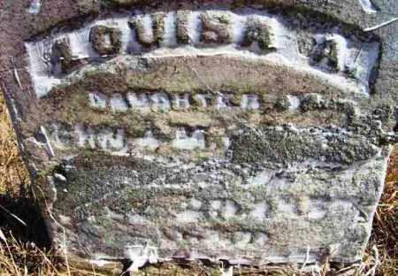 UNKNOWN, LOUISA A - Baxter County, Arkansas | LOUISA A UNKNOWN - Arkansas Gravestone Photos