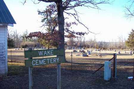 *, WAKE CEMETERY OVERVIEW - Baxter County, Arkansas | WAKE CEMETERY OVERVIEW * - Arkansas Gravestone Photos
