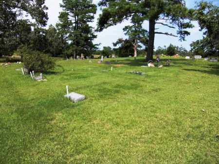 *, WALKER CEMETERY OVERVIEW - Baxter County, Arkansas   WALKER CEMETERY OVERVIEW * - Arkansas Gravestone Photos
