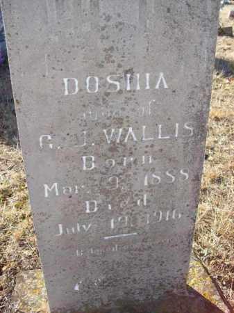 WALLIS, DOSHIA - Baxter County, Arkansas | DOSHIA WALLIS - Arkansas Gravestone Photos