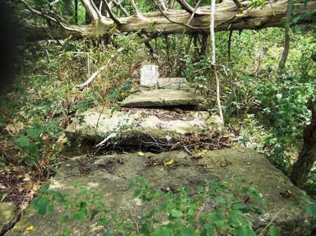 *, WILLIAMS CEMETERY - Baxter County, Arkansas | WILLIAMS CEMETERY * - Arkansas Gravestone Photos