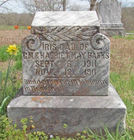BANKS, IRIS - Benton County, Arkansas | IRIS BANKS - Arkansas Gravestone Photos