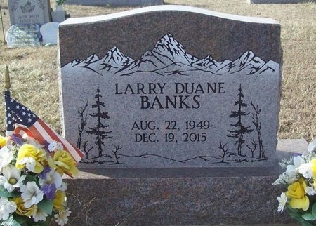 BANKS, LARRY DUANE - Benton County, Arkansas | LARRY DUANE BANKS - Arkansas Gravestone Photos