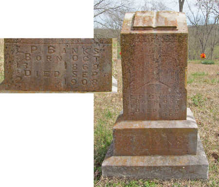 BANKS, L P - Benton County, Arkansas | L P BANKS - Arkansas Gravestone Photos