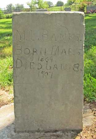 BANKS, M L - Benton County, Arkansas | M L BANKS - Arkansas Gravestone Photos