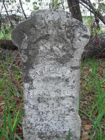 CLEGG, ETHEL E. - Benton County, Arkansas | ETHEL E. CLEGG - Arkansas Gravestone Photos
