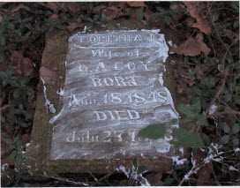 COY, TABITHA J - Benton County, Arkansas | TABITHA J COY - Arkansas Gravestone Photos
