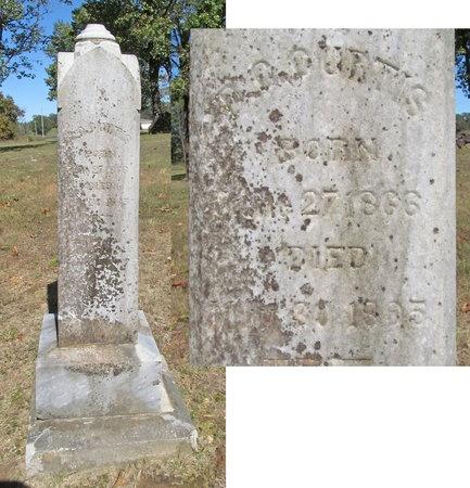 CURTIS, D C - Benton County, Arkansas   D C CURTIS - Arkansas Gravestone Photos