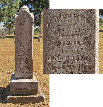 CURTIS, M JOSEPHINE - Benton County, Arkansas | M JOSEPHINE CURTIS - Arkansas Gravestone Photos