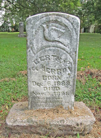 HERRON, BERTHA - Benton County, Arkansas | BERTHA HERRON - Arkansas Gravestone Photos