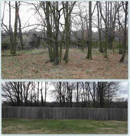 JACKSON CEMETERY OVERVIEW, * - Benton County, Arkansas   * JACKSON CEMETERY OVERVIEW - Arkansas Gravestone Photos