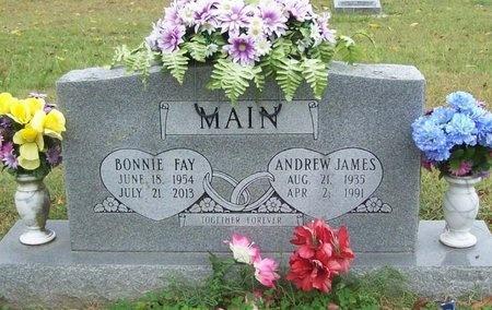 MAIN, ANDREW JAMES - Benton County, Arkansas | ANDREW JAMES MAIN - Arkansas Gravestone Photos