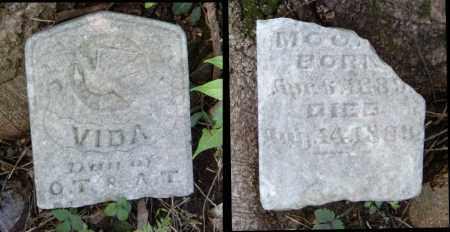 MOORE, VIDA - Benton County, Arkansas | VIDA MOORE - Arkansas Gravestone Photos