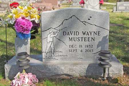 MUSTEEN (VETERAN), DAVID WAYNE - Benton County, Arkansas | DAVID WAYNE MUSTEEN (VETERAN) - Arkansas Gravestone Photos