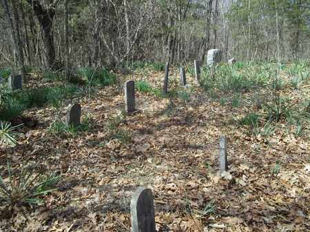 *MAHURIN CEMETERY OVERVIEW (1),  - Benton County, Arkansas |  *MAHURIN CEMETERY OVERVIEW (1) - Arkansas Gravestone Photos