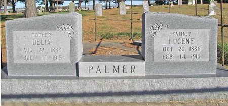 PALMER, EUGENE - Benton County, Arkansas | EUGENE PALMER - Arkansas Gravestone Photos