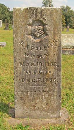 PALMER, E A - Benton County, Arkansas   E A PALMER - Arkansas Gravestone Photos