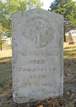 POTTER, MARY J - Benton County, Arkansas | MARY J POTTER - Arkansas Gravestone Photos