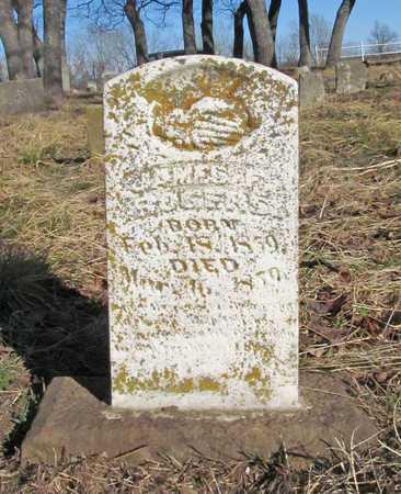 ROGERS, JAMES F - Benton County, Arkansas   JAMES F ROGERS - Arkansas Gravestone Photos