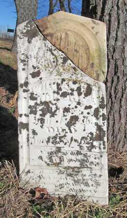 ROGERS, WILLIAM D - Benton County, Arkansas   WILLIAM D ROGERS - Arkansas Gravestone Photos