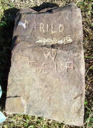 SELF, DARILD W. - Benton County, Arkansas | DARILD W. SELF - Arkansas Gravestone Photos